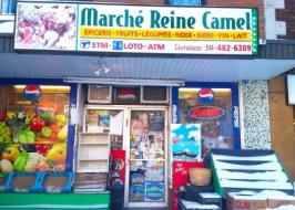 marché reine camel